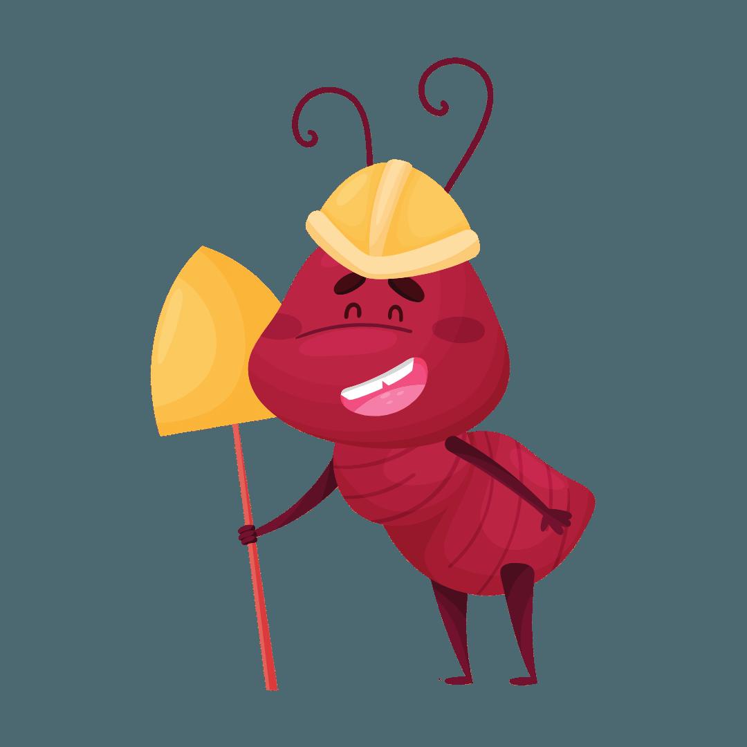 Termite Control Fortitude Valley
